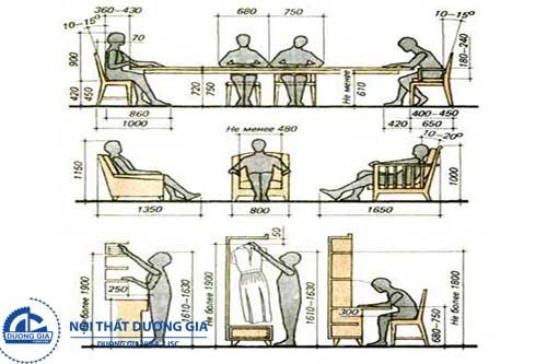 Ứng dụng của nhân trắc học trong thiết kế nội thất